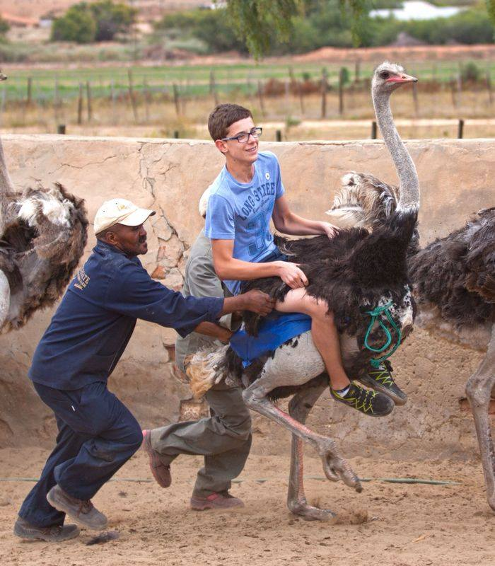 Exchange student riding a ostrich